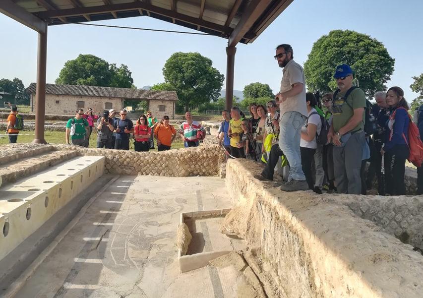 Area archeologica di Aquinum (FR) - 2018_presente  Gestione dei servizi di biglietteria, bookshop, eventi, visite guidate e laboratori didattici.